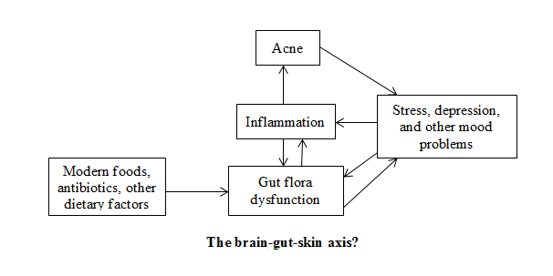 The brain-gut-skin axis