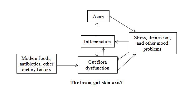 The brain-gut-skin axis
