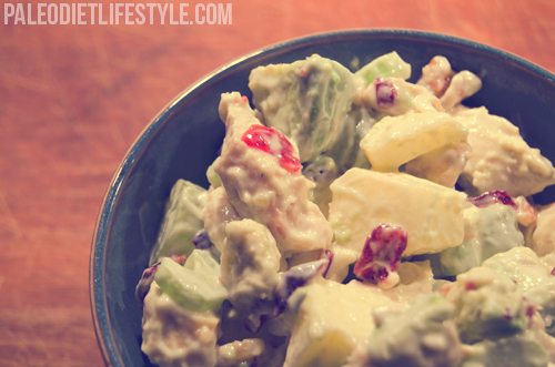 Chicken Salad With Grapes, Apples And Cranberries