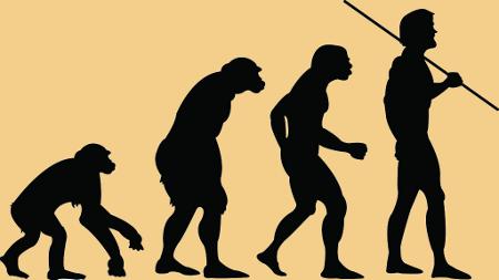 evolution Top Ten Posts of 2011