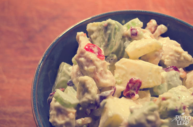 Chicken Salad With Grapes Apples And Cranberries Paleo Leap