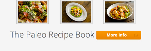 Learn more about the Paleo Recipe Book