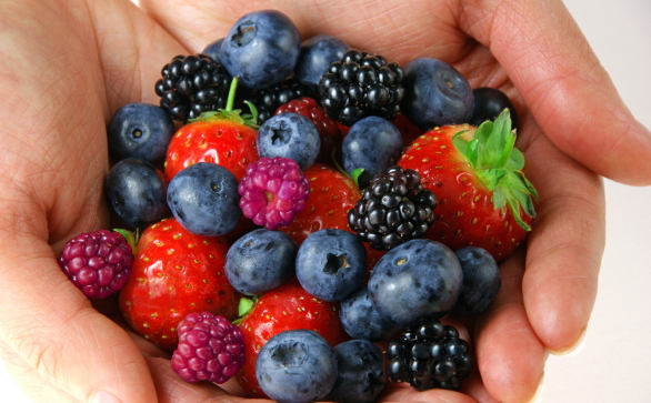 Handful of berries