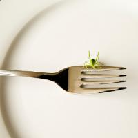 bug-on-fork