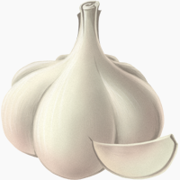 All About Garlic | Paleo Leap
