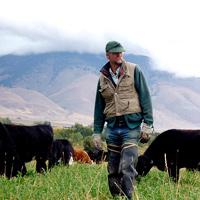 Glenn Elzinga - Alderspring Ranch